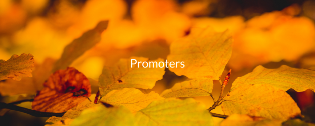 Name-IS-Promoters
